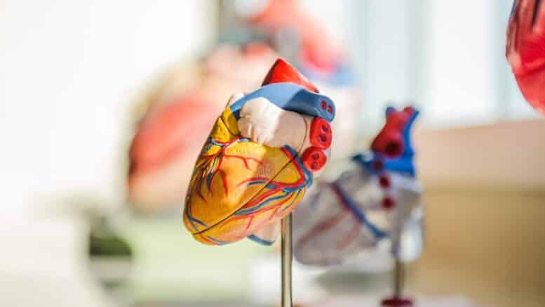 Government Grants for Heart Patients
