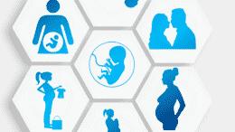 Maternity Leave Grants