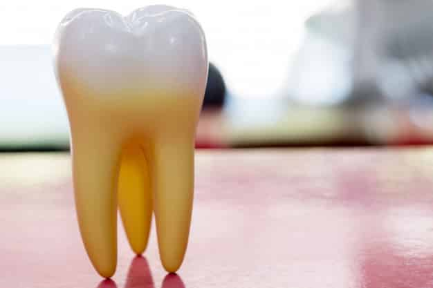 Stem Cell Dental Implants Clinical Trials