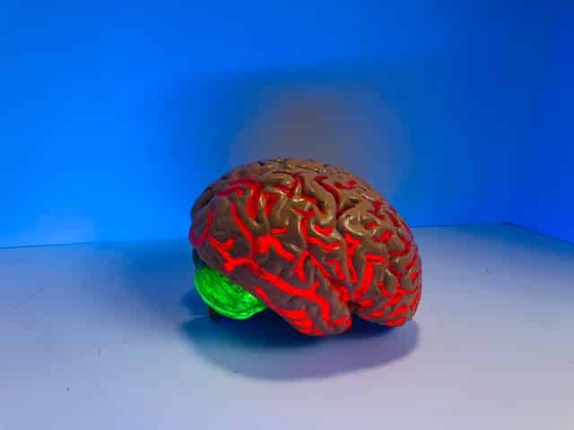 Funding under Alzheimer's Association International Research Grant Program