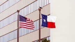 ivf grants in texas