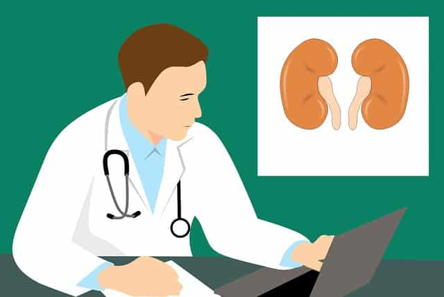 Marshall University Researcher Awarded $1.36 million NIH Grant for Kidney-related Research